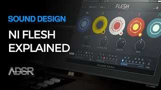 Flesh by Tim Exile / Native Instruments - Features Overview