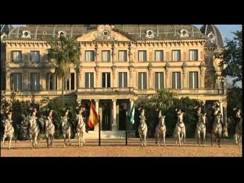 La Fundación Real Escuela Andaluza Del Arte Ecuestre Youtube
