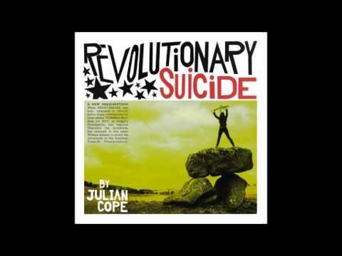 julian cope - revolutionary suicide