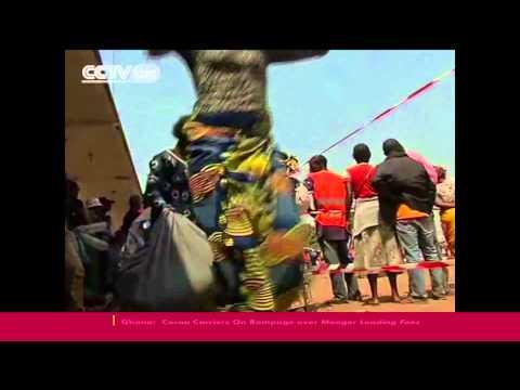 Regional leaders meet in Chad to discuss Djotodia's future