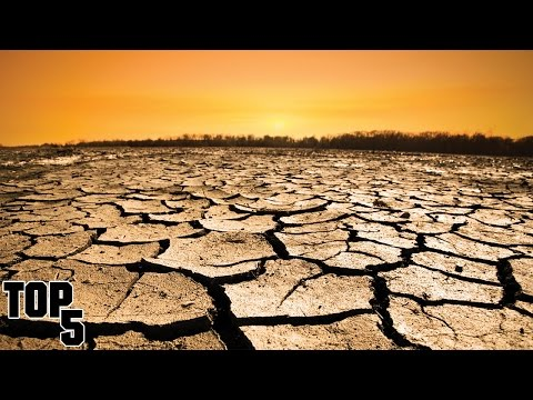 Top 5 Global Warming True Facts