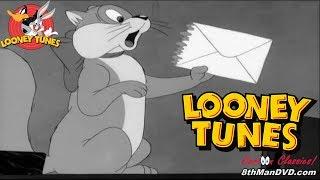 LOONEY TUNES (Looney Toons): Puss n