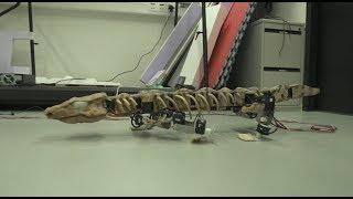 روبوتات تحاكي طريقة سير الحيوانات المنقرضة
