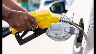 New Fuel Price: The Energy And Petroleum Regulatory Authority releases the latest fuel prices
