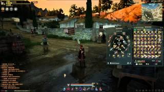Black Desert - UI Elements and Combat