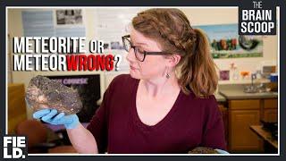 Meteorite or MeteorWRONG?