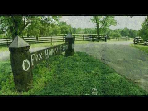 Die Fox Hollow Farm:  Was ging dort vor sich?