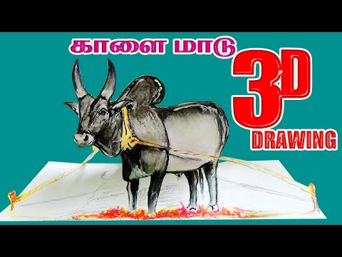 Download How To Draw A Jallikattu Easy Step By Step Easy And Simple