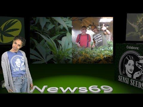 5ª Herbes del Dimoni Cannabis Cup, Tips Cultivo BIO de MARIHUANA, Clara Sativa en California NEWS 69