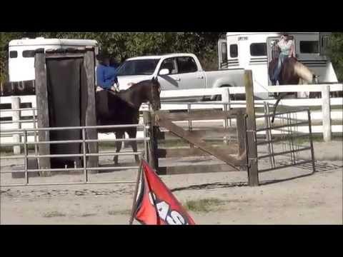 2014 Extrem Cowboy Race Amy Jo Freeman and Jackpot