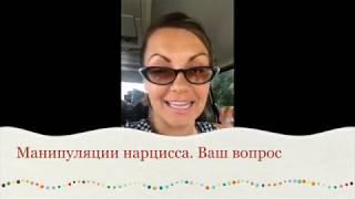 видео Нарциссы
