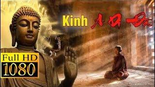 Tụng Kinh Phật A Di Đà - TT. Thích Trí Thoát tụng - Cầu An, Cầu Siêu Cực Kỳ Linh Nghiệm