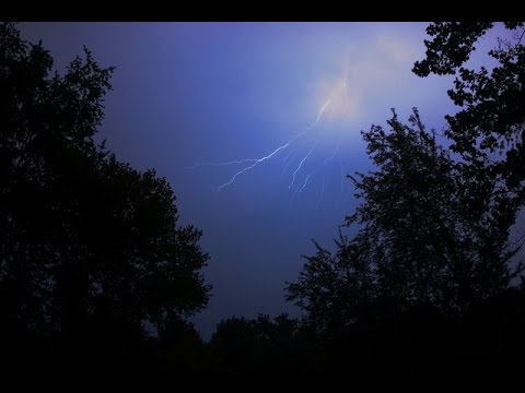 Frog Sounds At Night During Electric Storm