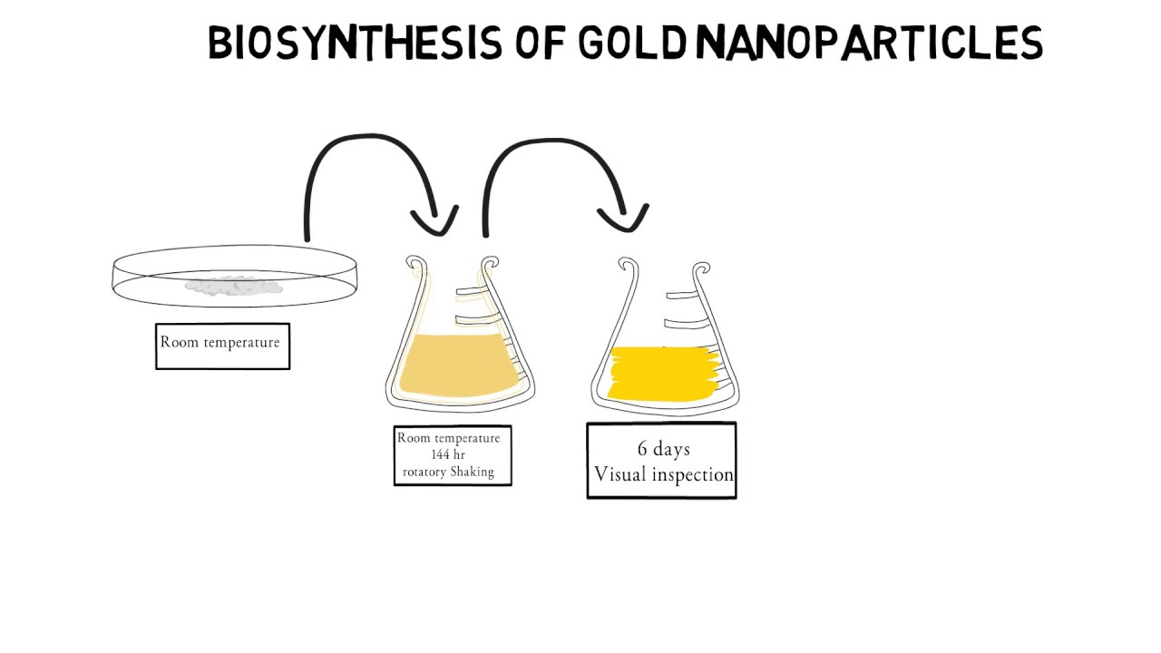 nanoparticles thesis