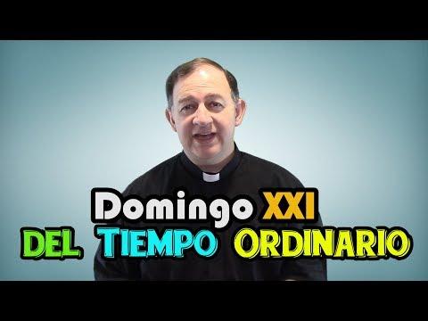 Domingo XXI del Tiempo Ordinario - Señor ¿a quién iremos?