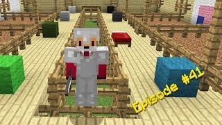Minecraft Survival - How to Dye Wool [41]