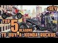 Top 5 Reasons to buy a Honda Ruckus [BONUS at the END]