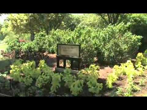 Nashville Tourism: Cheekwood Gardens