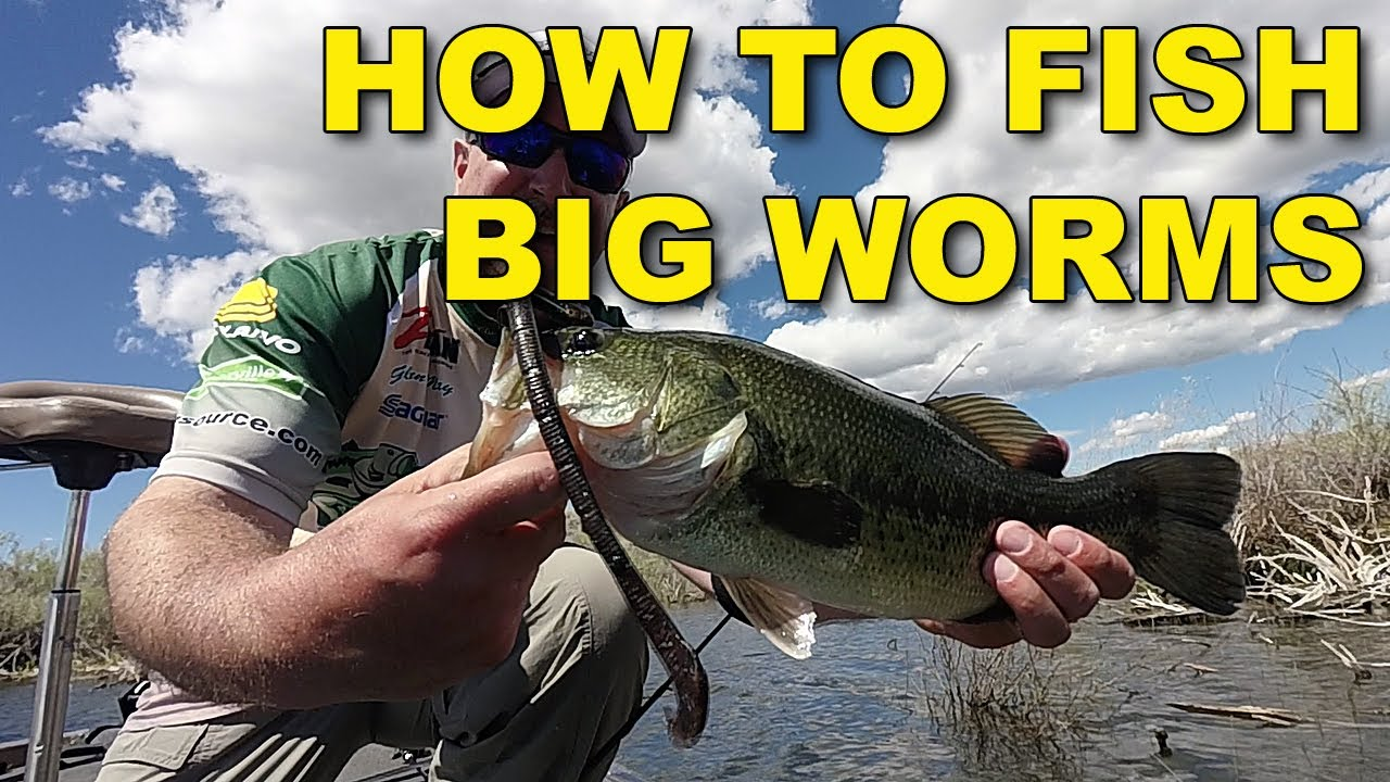 how to fish big worms the best ways bass fishing