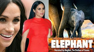 Meghan The Duchess of Sussex to narrate Elephant documentary out on April 3. Meghan Markle is back