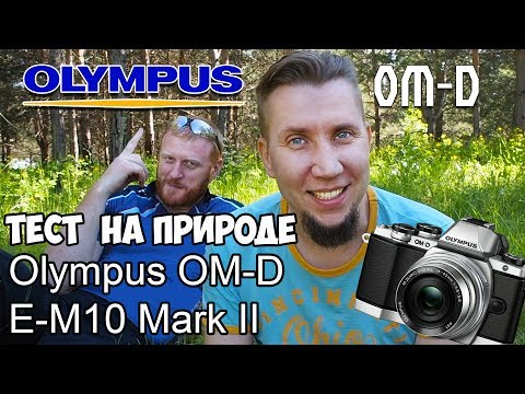 Тест Olympus OM-D E-M10 Mark II на природе