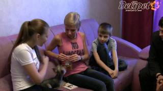 Start-Dog в гостях у семьи певицы Марины Девятовой