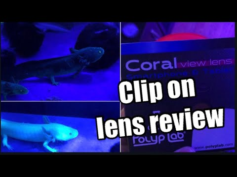 how-to-get-better-blue-light-pictures--coral-view-lens-review
