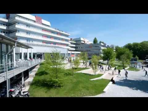 Universität Ulm - 2017