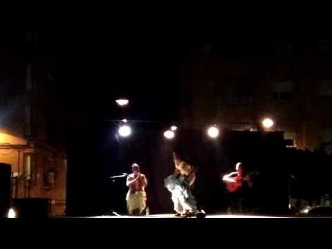 Flamenco,fiestas de alaquas 2016 parte 6