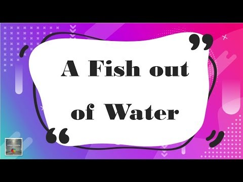 One Idiom Every Day: 21- A Fish Out Of Water