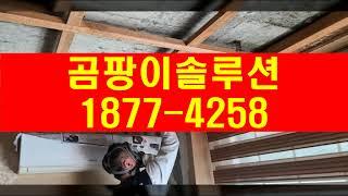 경기도 광주 곰팡이제거, 이천 여주 벽지 곰팡이 도배(…