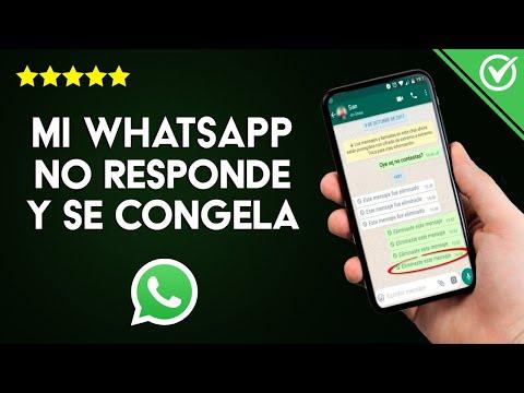 Solución: 'WhatsApp no Responde y se Congela al Abrir Audios, Fotos o Vídeos' en Android e iPhone