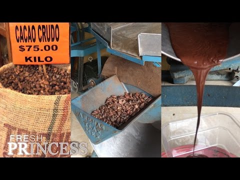 Cocoa Bean To Chocolate Process