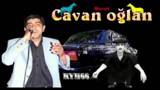 Cavan Oglan   Murad Papanin (ryh66)