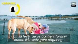 Caroline bliver reddet af to helte-hunde | Danskerbingo | DR P3