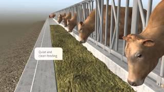 feedstar – The automatic feeding system of EDER
