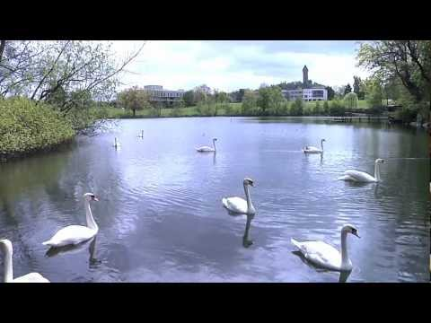 Education Department, University of Stirling - promotional video