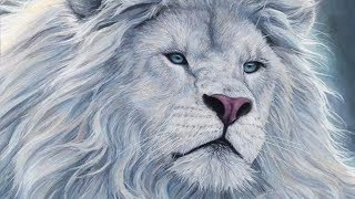 9 Tiere mit unglaublicher Schönheit