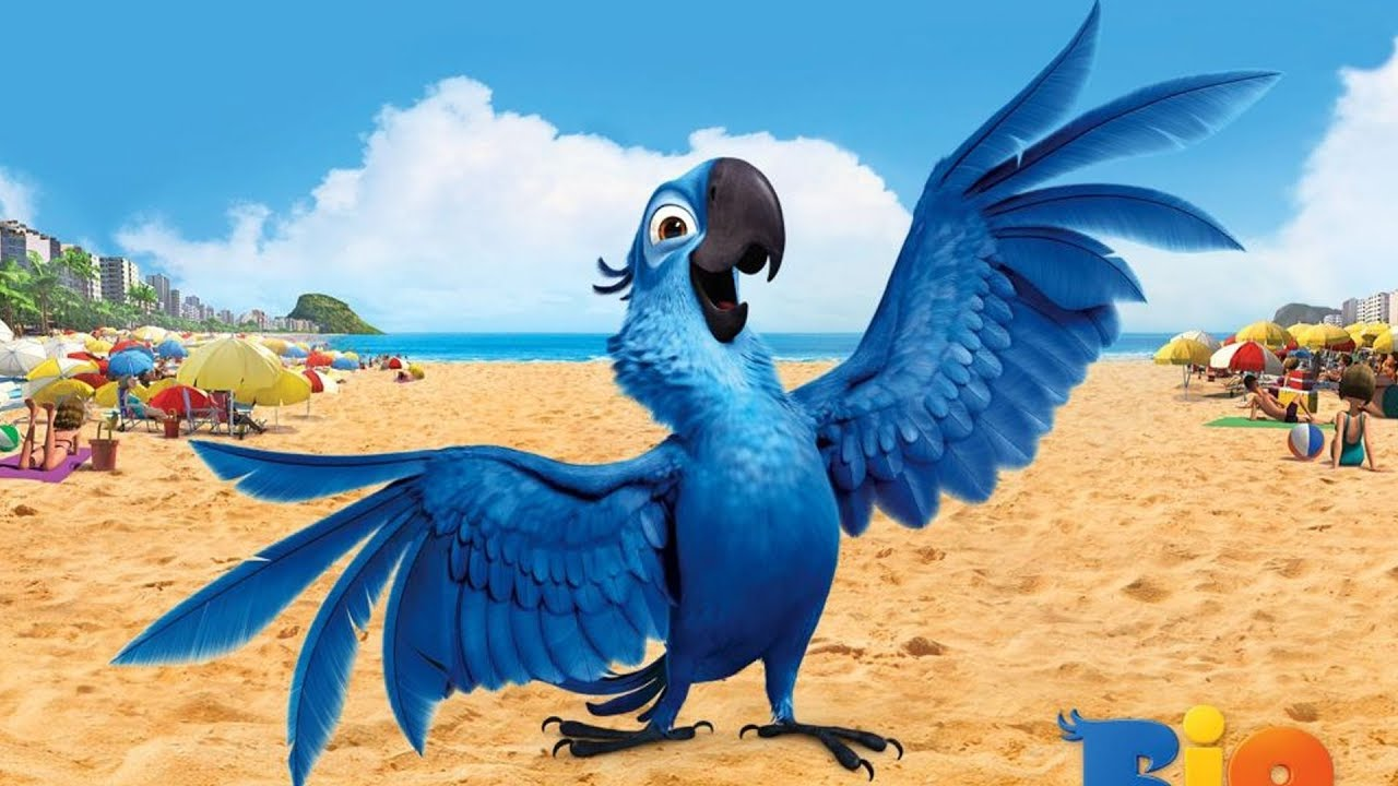 Рио картинки голубчик