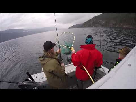 Catching Fish In The Lower Arrow Lakes BC