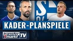 Kader-Planspiele Schalke 04: Wer wird Trainer? Wer kommt & wer geht?   TRANSFERMARKT