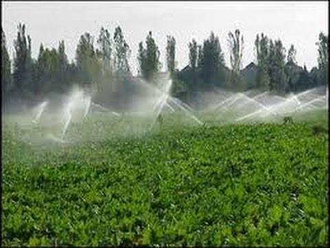 Sistemas de riego tvagro por juan gonzalo angel youtube for Sistema de riego por aspersion para jardin