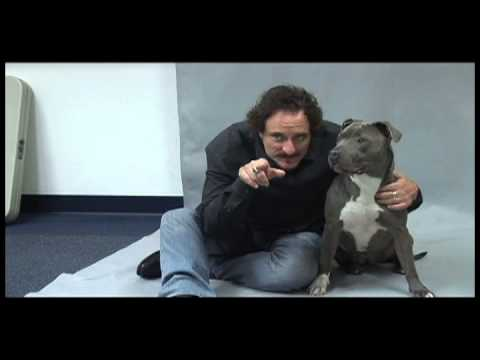 Kim Coates Talks About His Love For The Burbank Animal Shelter and Animals!