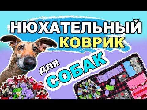 Как сшить для собаки коврик