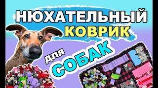 2 способа сделать нюхательный коврик для собаки