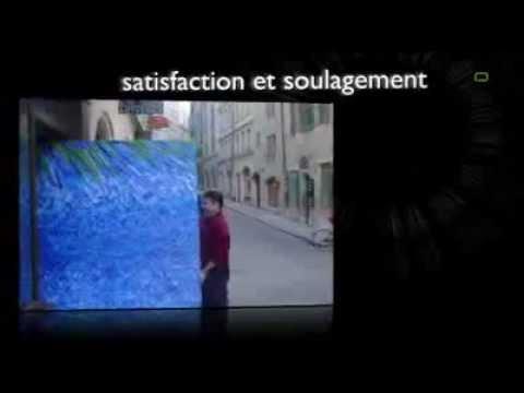 Flèche Déménagement - Genève - déménagement, transport, garde-meuble.avi