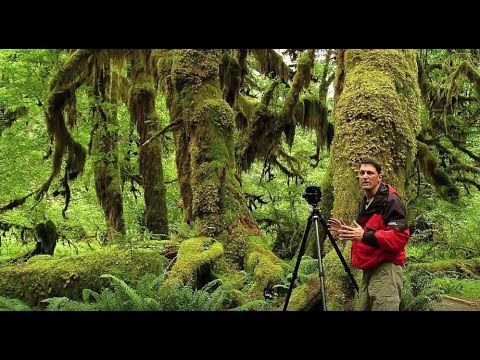 Olympic National Park - Wild Photo Adventures