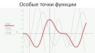 1003.Особые точки функции