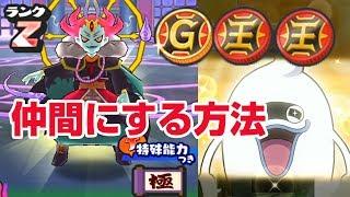 【ぷにぷに攻略】ランクZ輪廻(りんね)を仲間にする方法 テッカクなし 極妖魔界トーナメント