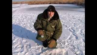 Зимняя Рыбалка: особенности ловли окуня со льда.